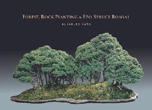 Forest, Rock Planting & Ezo Spruce Bonsai